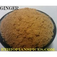 ground_ginger
